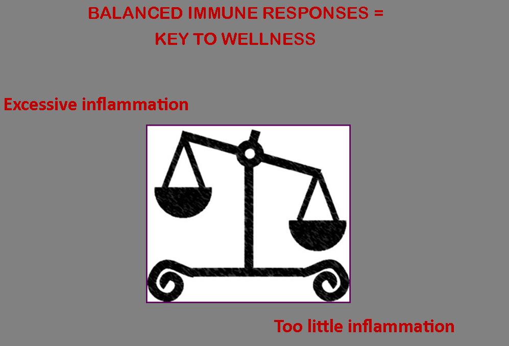 Scales Immune Reponses Partial